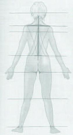 Линии, соединяющие симметричные точки на теле. рис.7